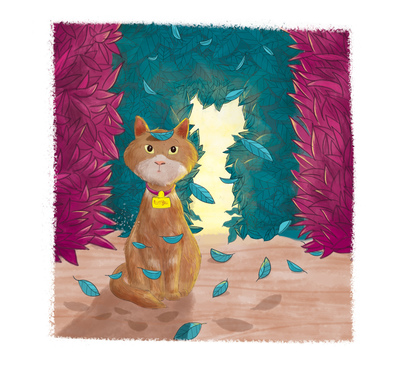 cat-jpg-31