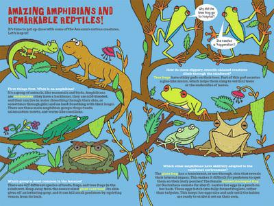 amazon-rainforest-reptiles-spread-jpg