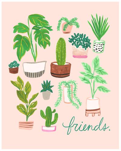 houseplants-botanical-friends-tropical-jpg