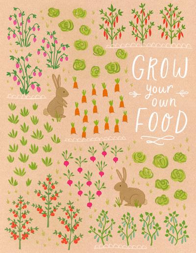 lettering-garden-vegetables-fruit-rabbit-jpg