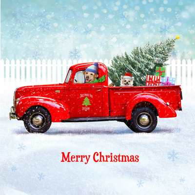 dog-vw-christmas-card-2-jpg