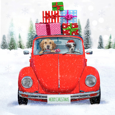 dog-vw-christmas-card-jpg