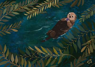 kelp-forest-sea-otter-wildlife-nature-jpg