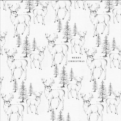 reindeers-bnw-01-copy-jpg
