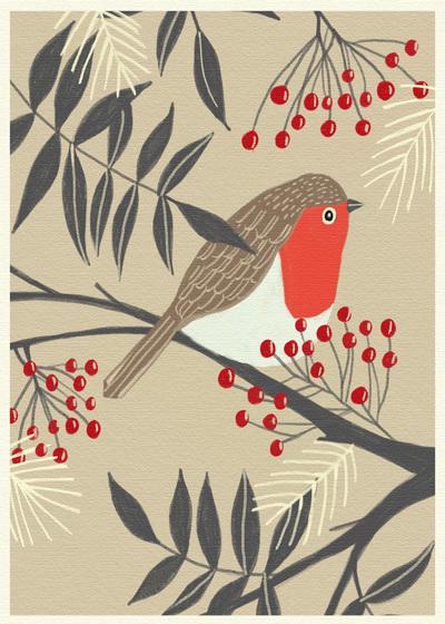 robin-on-a-branch-01-jpg