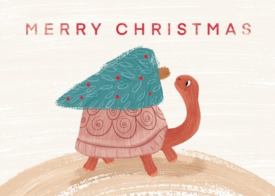 christmas-coast-turtle-hr-cmyk-jpeg