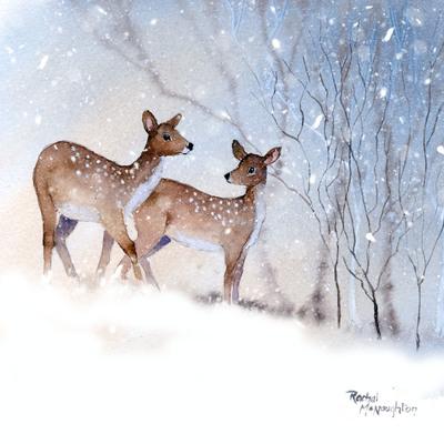 mountain-deer-jpg