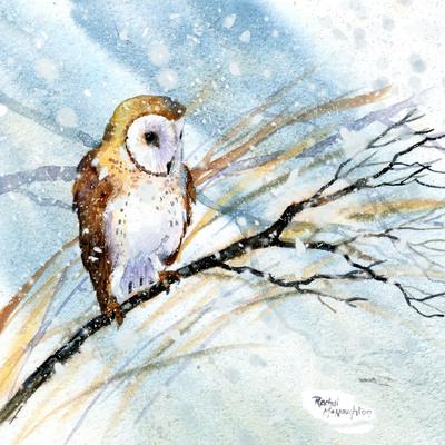 owl-jpg-30