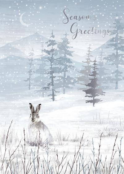 00455-dib-hare-mountain-scene-jpg