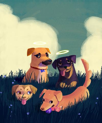 dogs-pets-grass-0-5-jpg