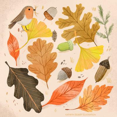 fall1-jpg