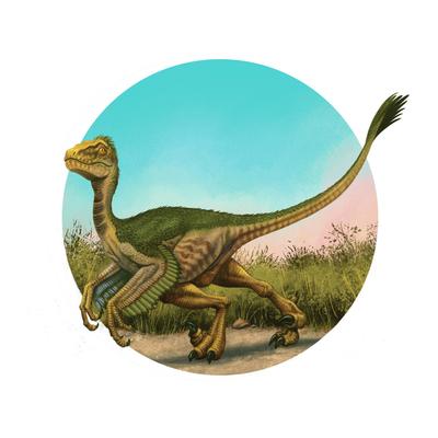 velociraptor-dinos-advocate-jpg