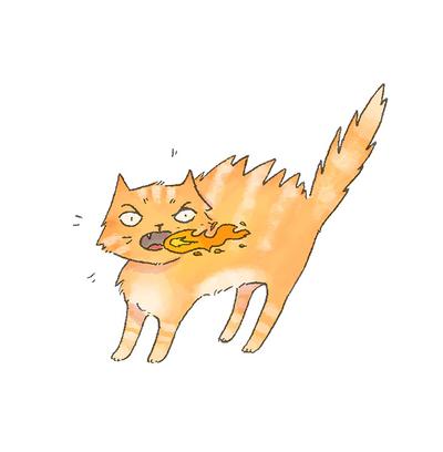 fire-cat-jpg