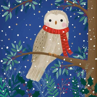 winter-owl-jpg