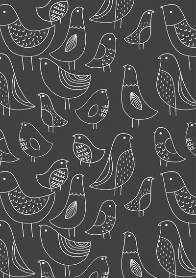 ap-bird-chalkboard-pattern-baby-01-jpg
