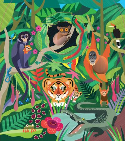 junglecover-lr-jpg
