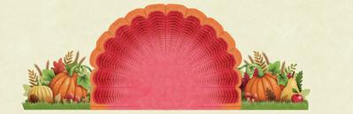 thanksgiving-turkey-components-2