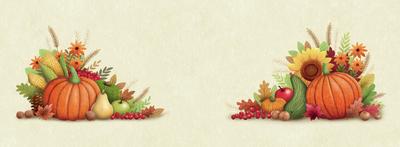 thanksgiving-turkey-components-3