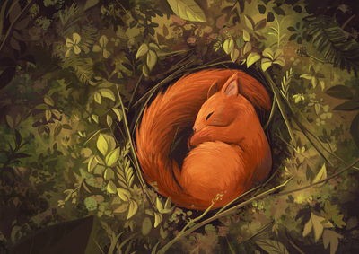 squirrel-sleep-forest-jpg