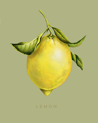 lemon-01-jpg