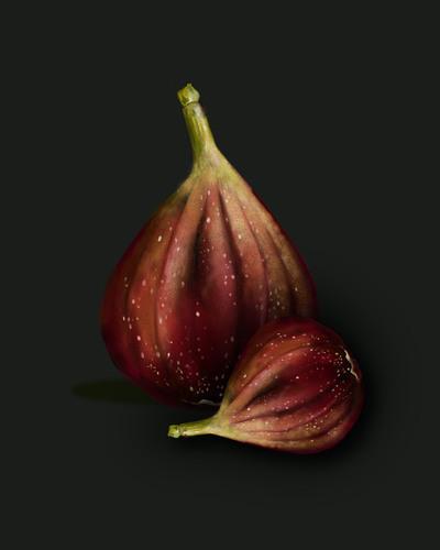 figs-01-jpg