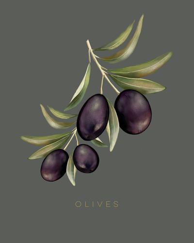 olives-01-jpg