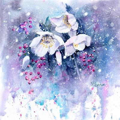 frosty-christmas-roses-jpg