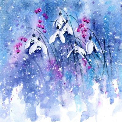 frosty-snowdrops-jpg