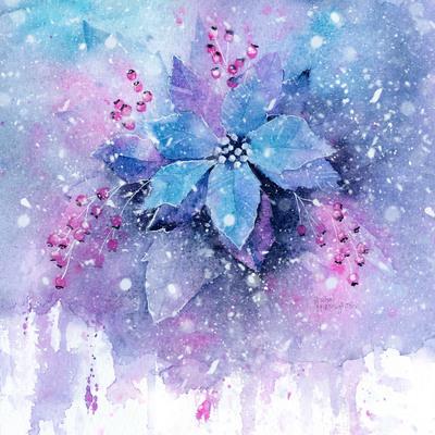 frosty-poinsettia-jpg