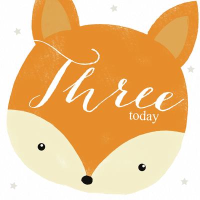 fox-head-age-3-juvenile-lizzie-preston-jpg