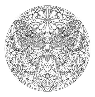 lizzie-preston-butterfly-jpg