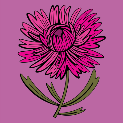 aster-png