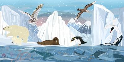 arctic-animals