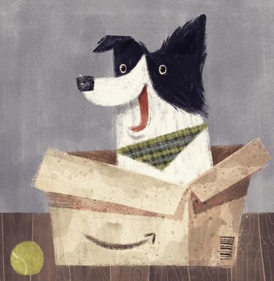 dog-border-collie-character-cute-box-amazon-home-catonpaper-2-19-jpg