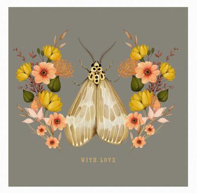 new-moth-design-01-jpg