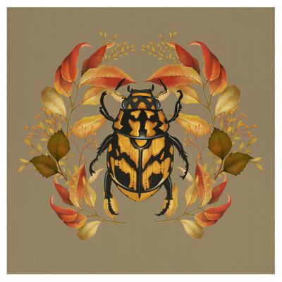 autumn-beetle-01-jpg