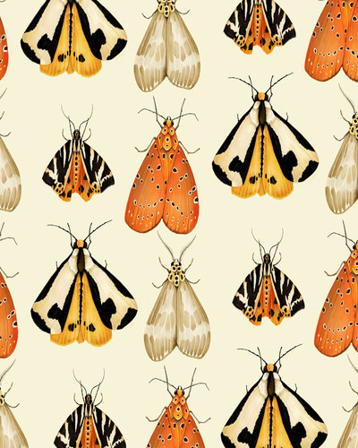 moths-repeat-01-jpg