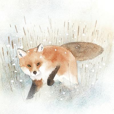 fox-frosty-snowy-christmas-jpg