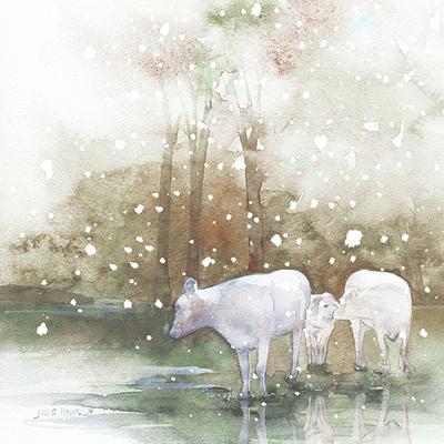 charolise-cattle-snow-christmas-jpg