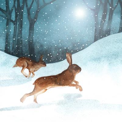 hare-xmas-forest-snow-jpg