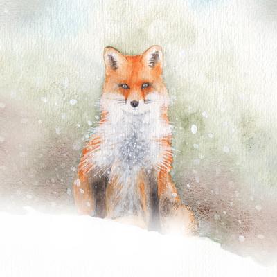 fox-jpg-11
