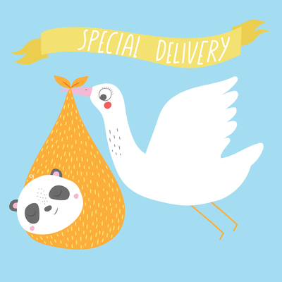 ap-new-baby-stork-special-delivery-baby-announcement-greeting-card-v1-jpg