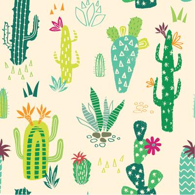 cactus-jpg-4