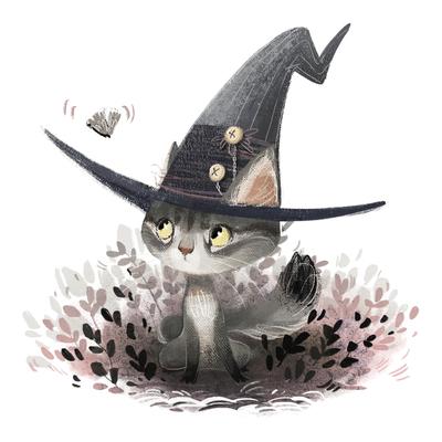 wizard-cat