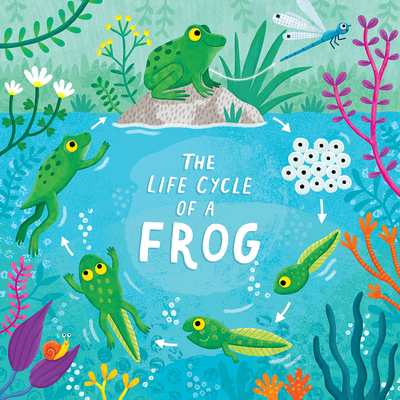 frog-lifecycle-tadpole-frogspawn-jpg