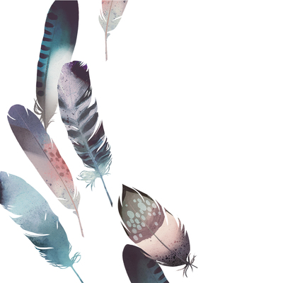 feathers-7