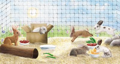 nip-it-dig-it-rabbits-jpg