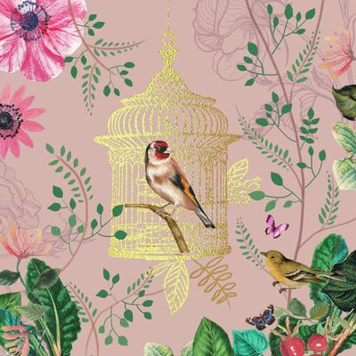vintage-bird-cage-art-jpg