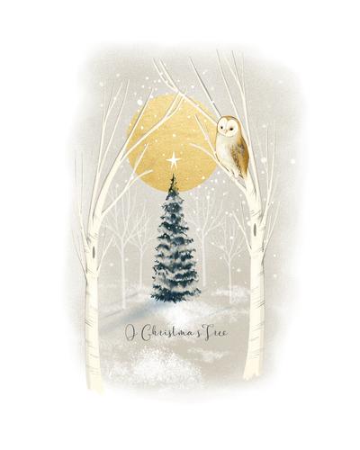 snowy-xmas-owl-01-jpg