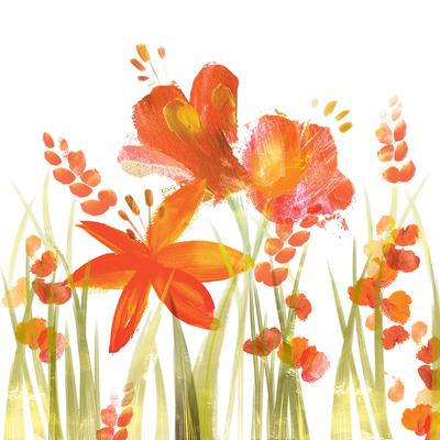 crocosmia-bright-stems-jpg